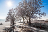 winter road on a sunny frosty day with blue sky and sun