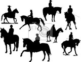 Fotografie eight  horse rider silhouettes vector illustration