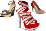 fashion woman shoes vector illustration