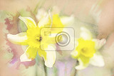 spring daffodils in garden vintage retro watercolor effect
