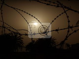 Fotografia barbed wire