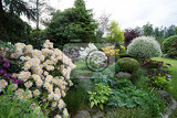 beautiful spring garden design with flowering rhododendron and conifers