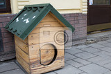 Fotografie dog wooden house