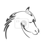 black ink horse head illustration in calligraphy style