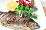grilled trout garnished with salad greens