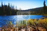Fotografie Autumn, water, Laka lake and mountains. Water, forest, grass and trees. Sumava.