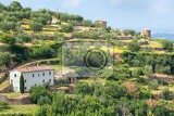 Fotografie near surroundings  landscape picturesque tuscan town of montalcino