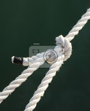 Fotografie tight knot on a white rope  closeup