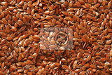 flaxseeds also called linseeds  rich source of healthy fat antioxidants and fiber