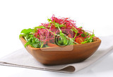 mixed green salad with pea and beetroot sprouts