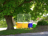 Fotografia recycling containers under  chestnut tree