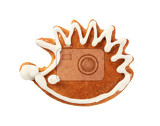 Fotografie gingerbread cookie in the shape of hedgehog