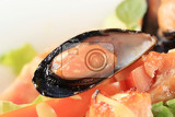 Fotografie detail of salmon and mussel salad