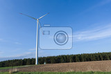 Fotografie wind turbines  alternative and green energy source in sunny daby with blue sky