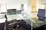 meeting room in a modern company  interior