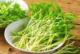 detail of fresh green pea sprouts