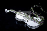 white decorative violin and flower composition