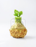 Fotografie celery root on white background