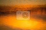Fotografie spring sunset reflecting in water spring scene background dusk sky reflecting in pond tranquil spring sunset