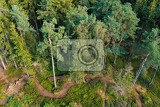 Fotografie aerial view from lookout u jakuba to forest top view of famous touristic place with hiking trails