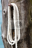 white mooring rope on wooden post