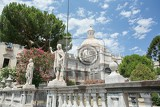 the statue of st agatha the patron of catania surrounded by blooming trees of the cathedral