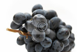 cluster of grapes isolated on white background