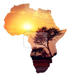 Fotografie african sunset with acacia map of africa continent concept africa safari nature wilderness concept