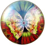 Photo 3d rendering of glossy button with colorful fractal butterfly embellishment