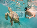 young boy snorkel synchronous swim with big adult green sea turtle chelonia mydas in exotic tropics paradise marsa alam egypt summer holiday vacation concept