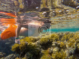 Fotografie young boy snorkel swim in underwater exotic tropics paradise with fish and coral reef marsa alam egypt summer holiday  vacation concept