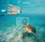 young boy snorkel swim with big adult green sea turtle chelonia mydas in exotic tropics paradise marsa alam egypt summer holiday vacation concept