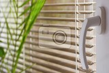 Fotografia new modern plastic window and interior rooms blinds in a home catching the sunlight