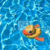 yellow rubber duck yellow rubber duck in the home pool in the summer