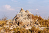 Photo termite mound in africa etosha national park namibia