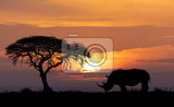 Photo typical african scenery silhouette of large acacia tree in the savanna plains with rhino rhinoceros africa wildlife and wilderness sunset concept