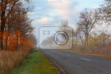 misty road in morning in hortobagy national park hungary puszta is famous ecosystems in europe and unesco world heritage site