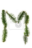 Fotografia m  symbol from pine tree part of christmas alphabet