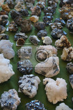 metal and others mineral collection as very nice natural background