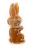 easter bunny as gingerbread cookie isolated on the white background
