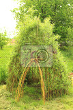Fotografie willow door to small children house as natural background