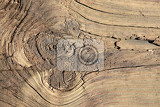 old wood texture as very nice background