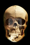 Photo real human skull in the dark night