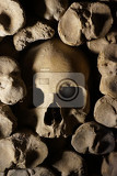 Photo human bones and skulls as pirate wall background