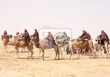 Photo camel caravan on the sahara desert in the tunisia