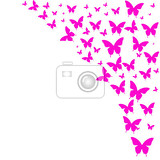 cartoon illustration frame on the right side of the picture formed by pink butterflies silhouettes